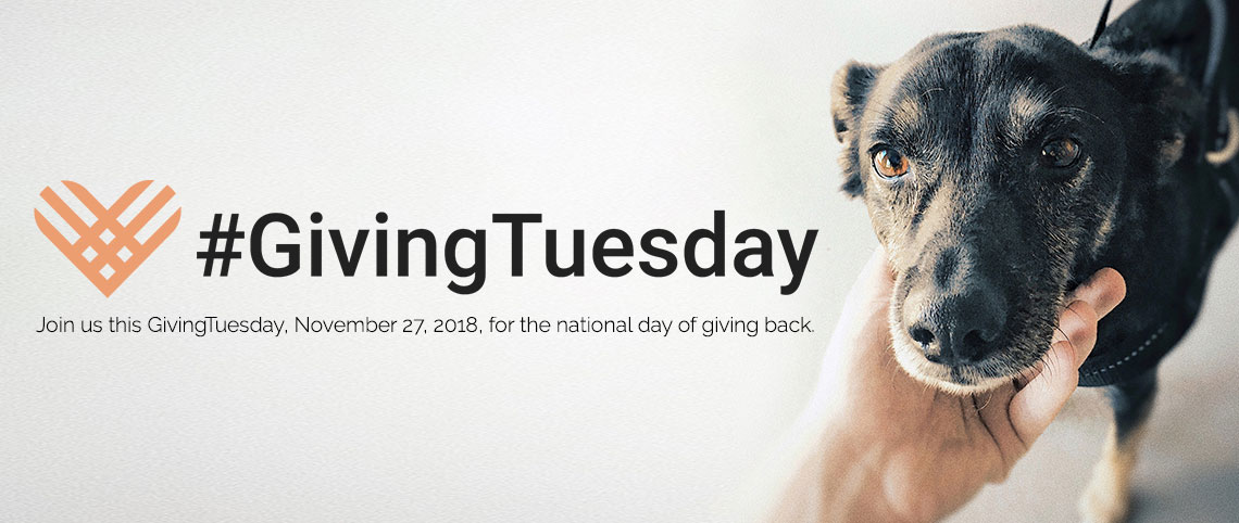 Giving Tuesday 2018 v01