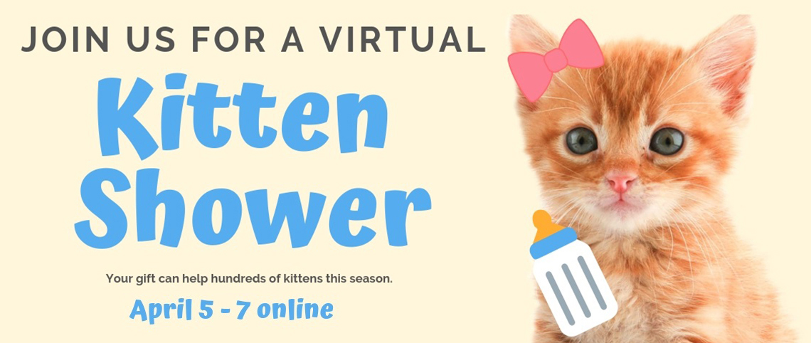 2019 KITTEN SHOWER v02